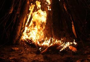 Bonfire of the cliches