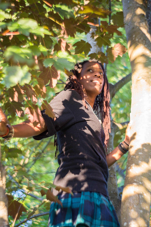 21 Jay up a tree