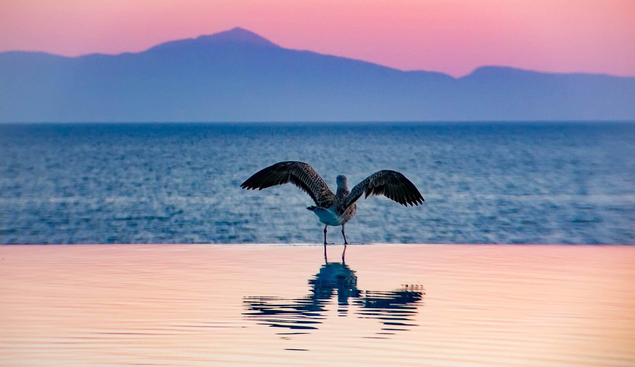 34-august-greece