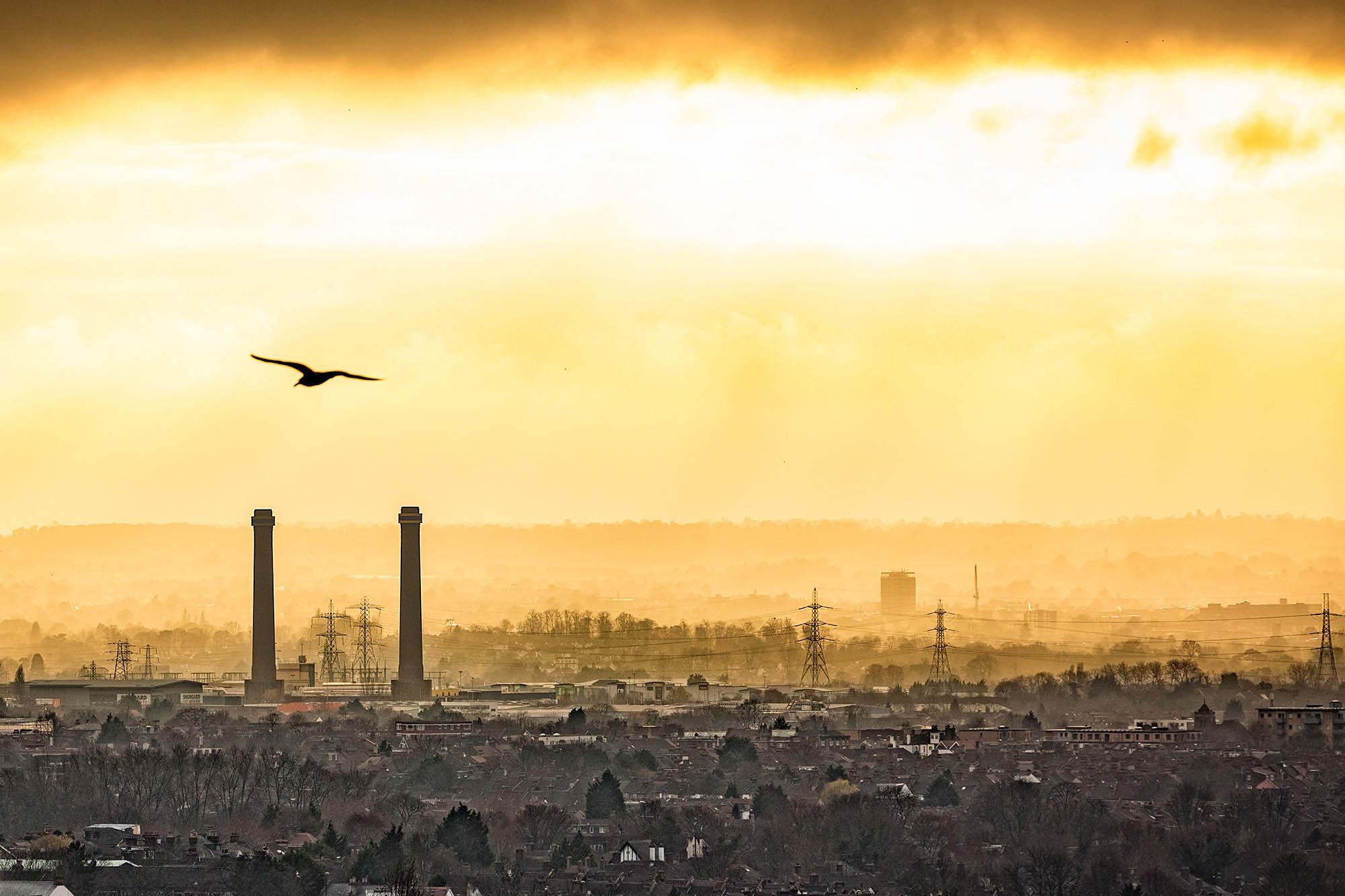 53-december-croydon